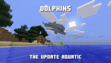 Update Aquatic dolphins