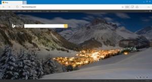 Spartan browser leak 3