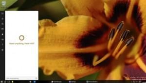 Windows 10 - 350px