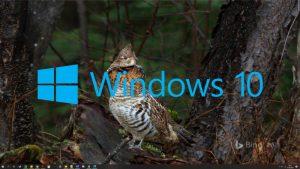 Windows 10 zmiana tapet
