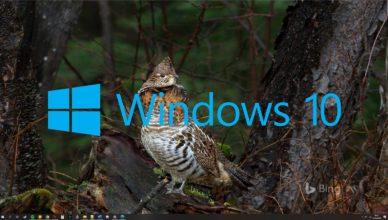 Windows 10 zmiana tapet